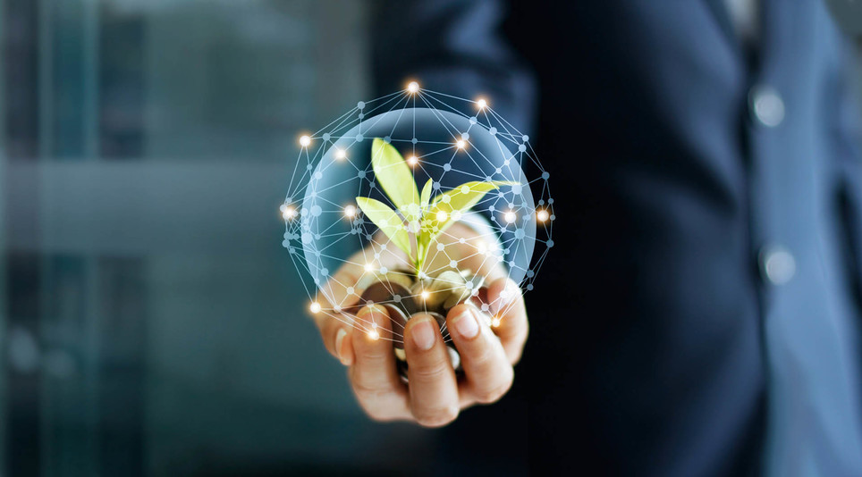 Man holding glass sphere with plant inside and surrounded by lights - The potential of coaching for growth – Orla Scott, One to One Coaching Expert
